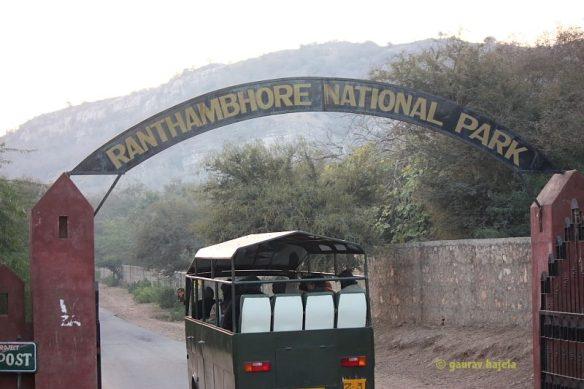 Ranthambhore Kothi
